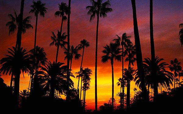 La-segunda-ciudad-con-mas-indocumentados-en-California-quiere-ofrecer-abogados-que-peleen-los-procesos-de-deportacion