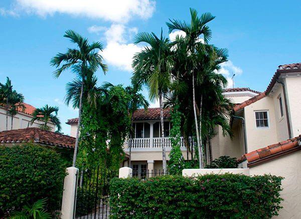 Lanzan convocatoria de becas para artistas latinos en Miami