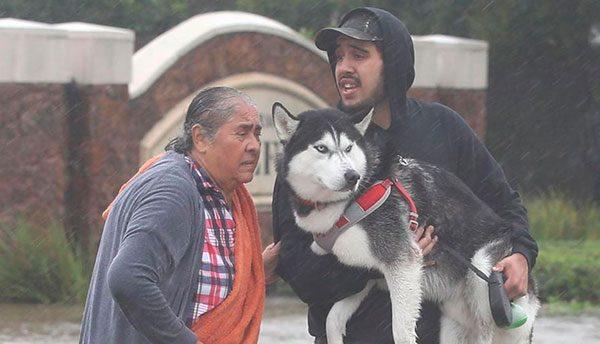 Consulado mexicano en Houston redobla atención a afectados por Harvey