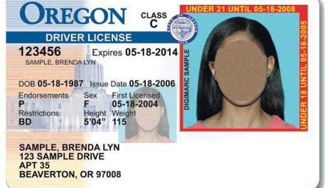 Oregon: décimo cuarto estado en dar licencias de manejo a indocumentados