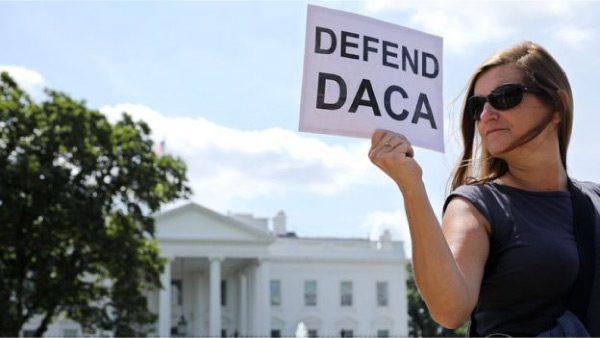Estudio de Harvard demuestra lo positivo que es DACA a Legisladoras para tomar decisión