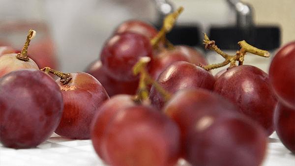 La uva ayuda a combatir la depresión y otras enfermedades